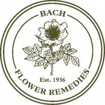 Qualified Bach Flower Remedy practitioner